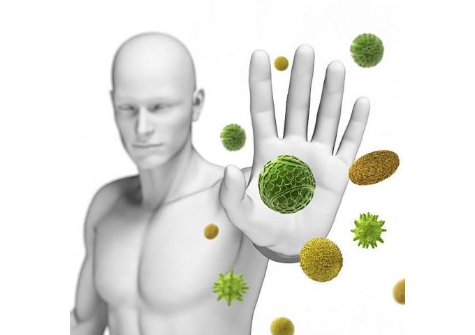 Como fortalecer el sistema inmune